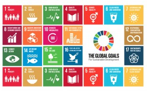 The United Nation's Sustainable Development Goals.